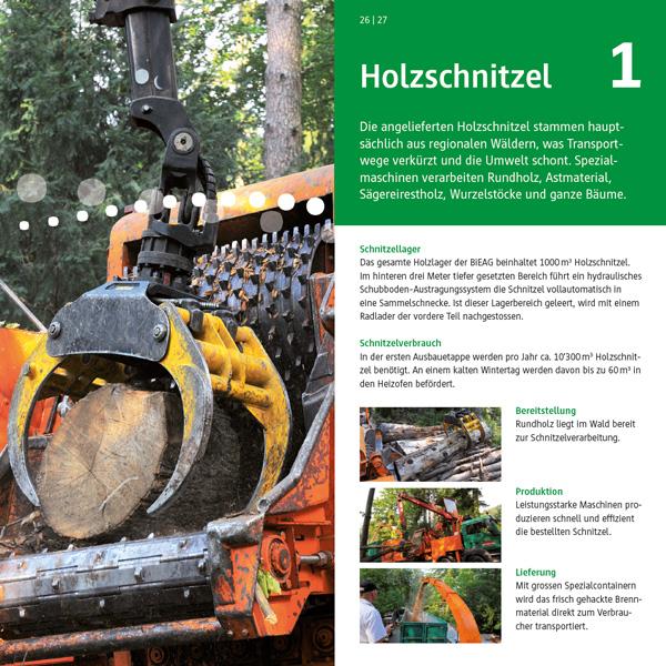 Webfotografik - BIEAG - Holzschnitzel