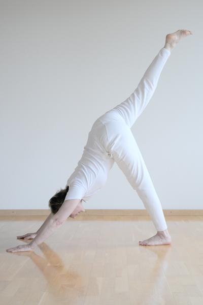 Webfotografik - YOGA SUNANDA - Yoga-01