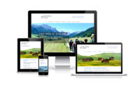 Webfotografik - Pilgernzug - Website